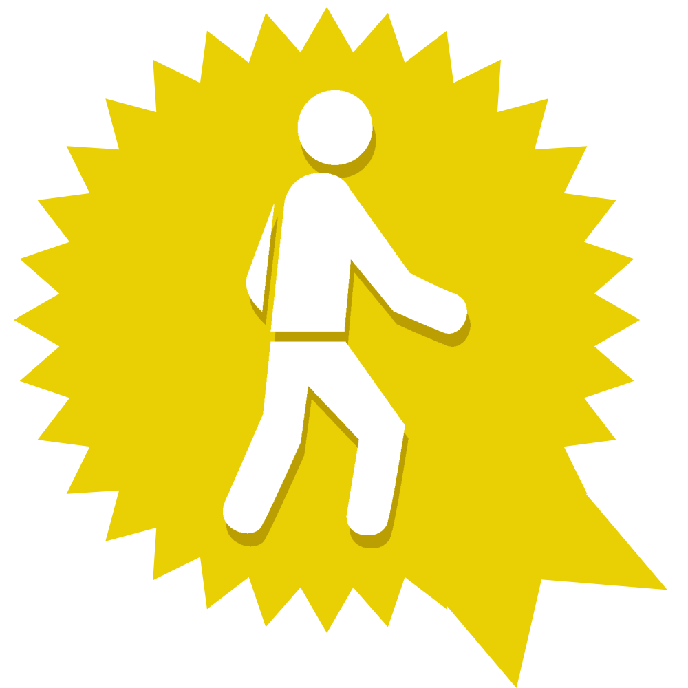 Champion walking badge: completed the #walk2016 1000 miles challenge